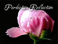 perfectionreflection