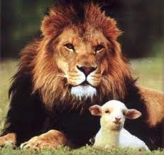 So the lion fell in love with the lamb - Deidre Madsen's Happily Inner After