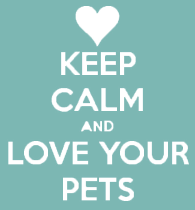 keep calm and love your pets deidremadsen Overweight & Angry from MSG