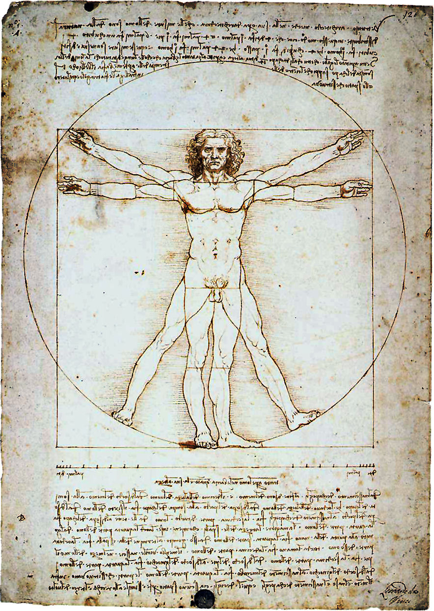 vitruvian man Ascension 101 - Deidre Madsen