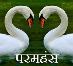 Where the space be'tween things speak ... Swans represent purity and transcendence in Vedantic teaching.  To be in divine ecstasy and simultaneously to be actively wakeful. And therefore, Paramahansa is found through Happily Inner After.